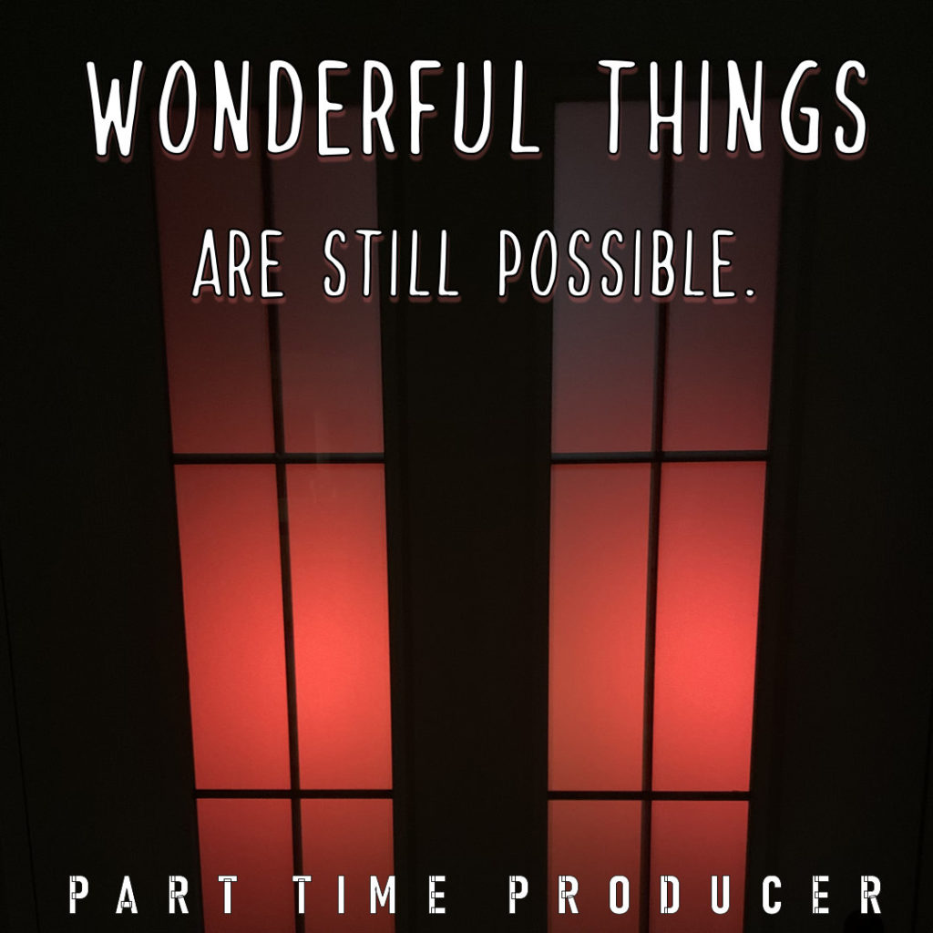 Front Cover Of Wonderful Things Are Still Possible