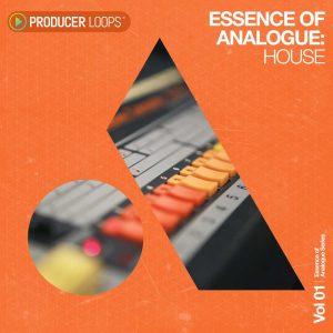 Essence of Analogue - House 01